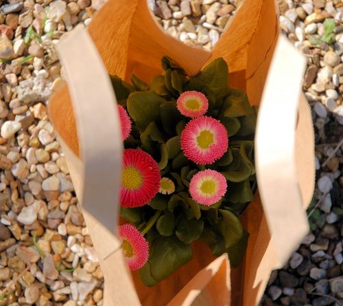 flowers-in-a-bag