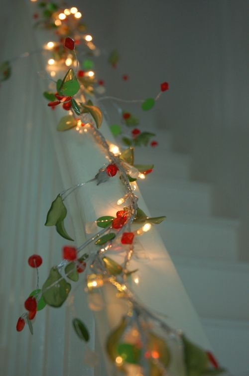 holly lights