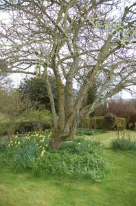 Ludlow_easter_067_2