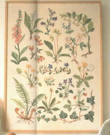 Wildflower_sampler